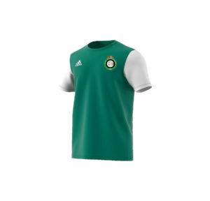 T-SHIRT VERDE ADIDAS Castellanzese Calcio serie D